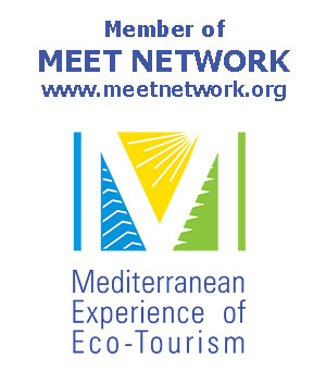 Member of MEET NETWORK